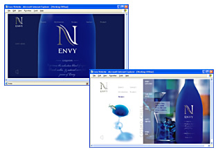 Envy Website